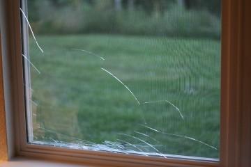 Window Repair_3