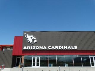Arizona Cardinals _14