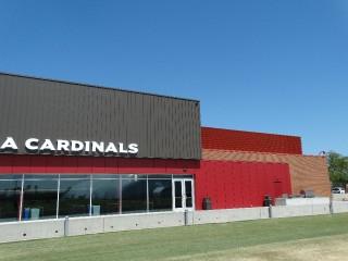 Arizona Cardinals _15
