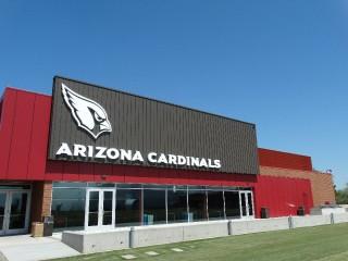 Arizona Cardinals _16