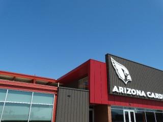 Arizona Cardinals _17