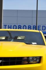Thorobred Chevy_33