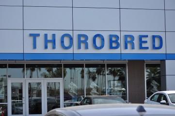 Thorobred Chevy_9